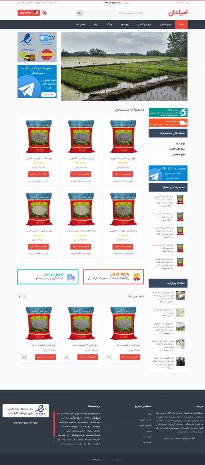 طراحی سایت فروشگاه امیلدان