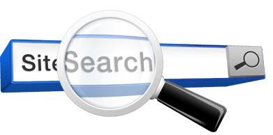 جستجو در وب سایت