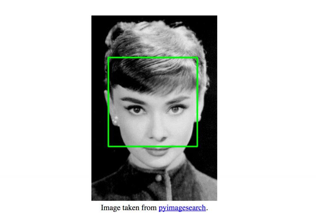 کتابخانه تشخیص چهره picojs